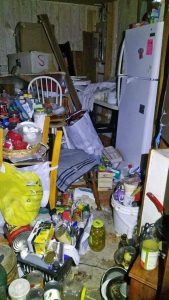 woman, 76 years old, recovering from hoarding